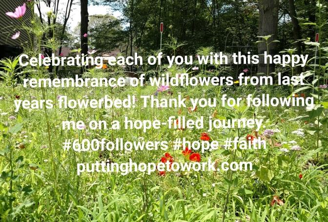 Thank you 600 times!