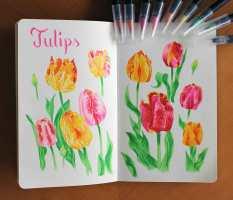 tulips-staged-IG